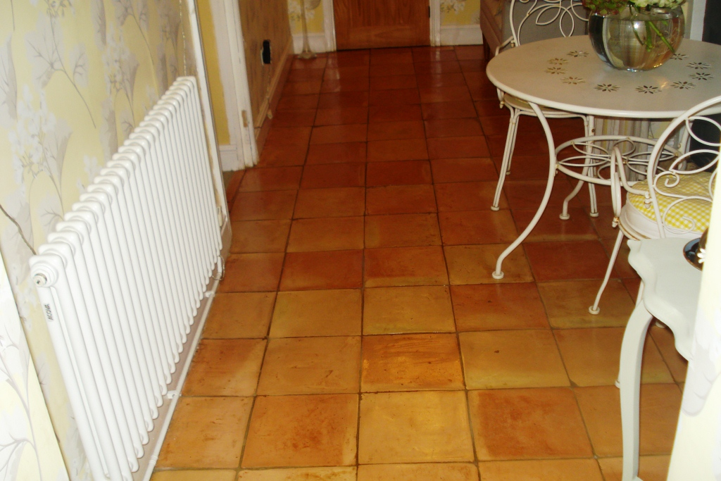 Terracotta Tile Cleaning after